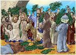 John 12 - Jesus triumphal entry