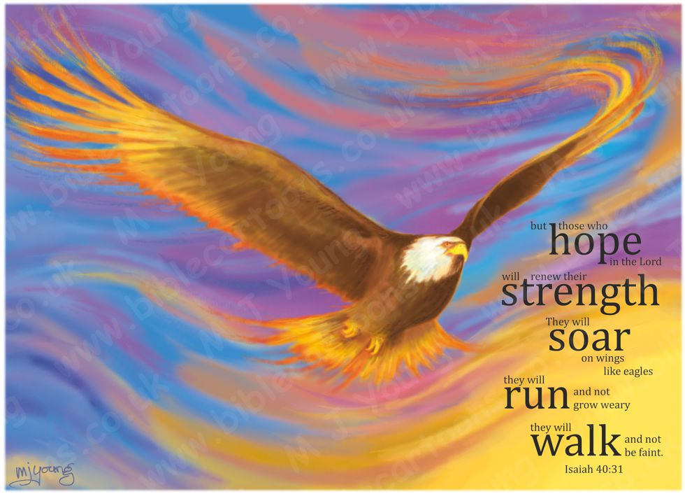 Isaiah 40 - Brown Eagle (Version 03 - Smooth backgnd with text) 980x706px col.jpg