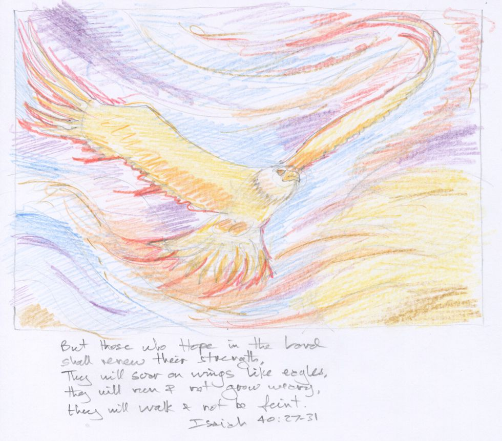 Fiery Eagle drawing 980x861px col.jpg