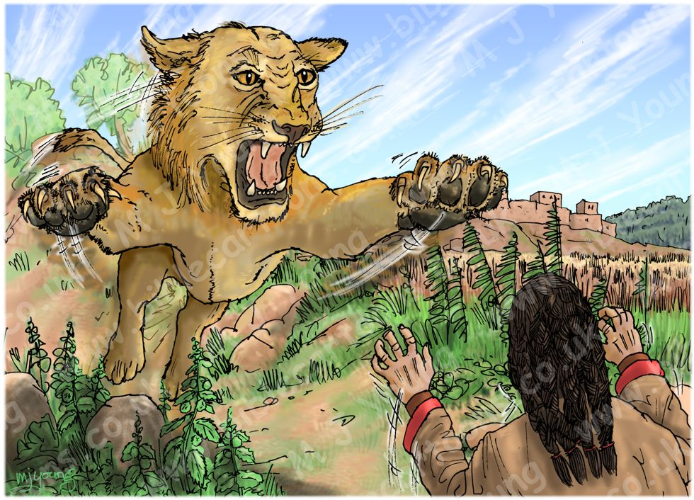 Judges 14 - Samson's marriage - Scene 02 - Lion charge 980x706px col.jpg