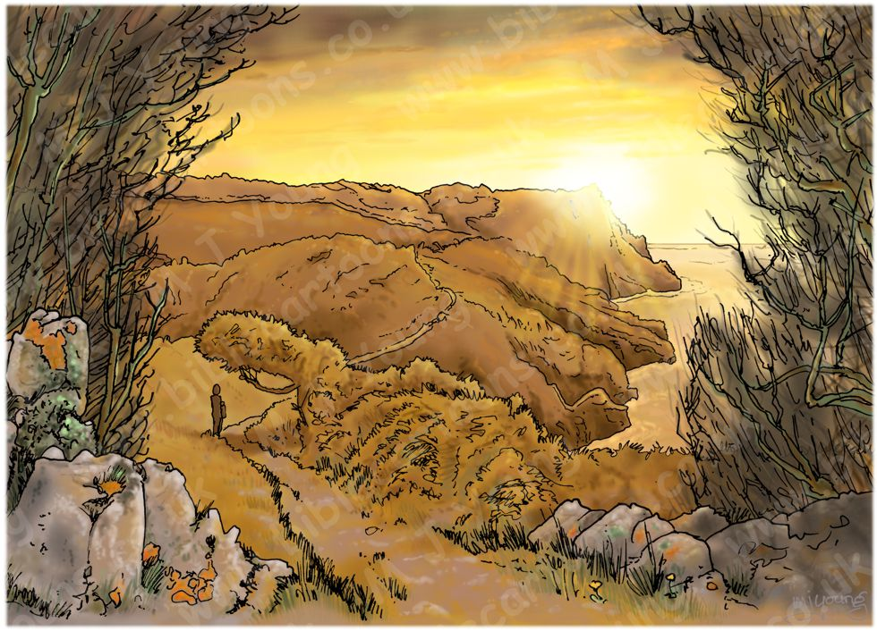 Psalm 16 - You have made known to me the path of life (Amber version, with hedge) 980x706px col.jpg