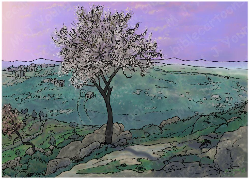 Judges 16 - Samson and Delilah - Scene 03 - Samson overlooking Hebron - Landscape 980x706px col.jpg