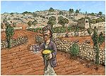 Matthew 13 - Parable of the sower - Scene 02 - Birds eat seed 980x706px col.jpg