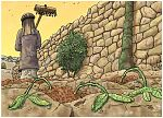 Matthew 13 - Parable of the sower - Scene 03 - Shallow roots 980x706px col.jpg