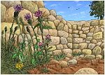Matthew 13 - Parable of the sower - Scene 04 - Choking thorns 980x706px col.jpg