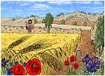 Matthew 13 - Parable of the sower - Scene 05 - Abundant crop 980x706px col.jpg
