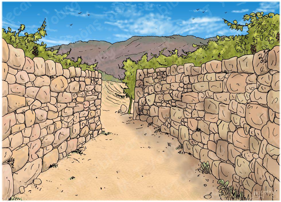 Numbers 22 - Balaam's Donkey - Scene 03 - Crushed foot - Landscape 980x706px col.jpg