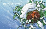 Christmas card - Christmas Robins