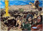 Exodus 16 - Manna and Quail - Scene 04 - Quail