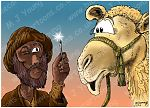 Matthew 19 - The rich young man - Scene 03 - Camel