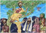 Luke 19 - Zacchaeus the tax collector - Scene 04 - Jesus calls 980x706px col