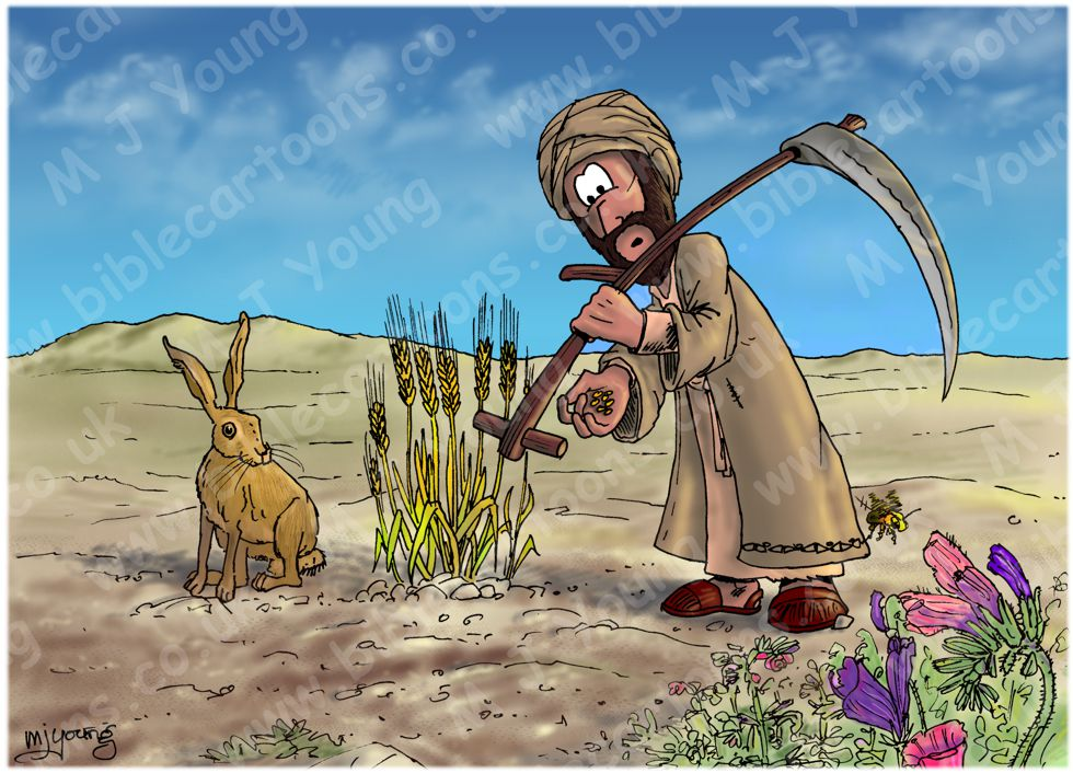 2 Corinthians 9 - Farmer harvesting sparingly