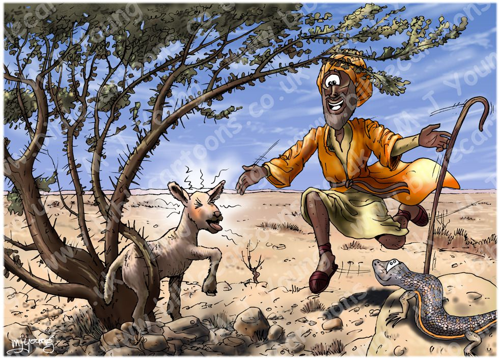 Matthew 18 - Parable of lost sheep - Scene 03 - Found